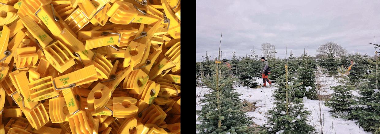 Vi passer selv alle vores juletræer.<br>